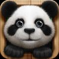 小熊猫(欣源实体店铺)